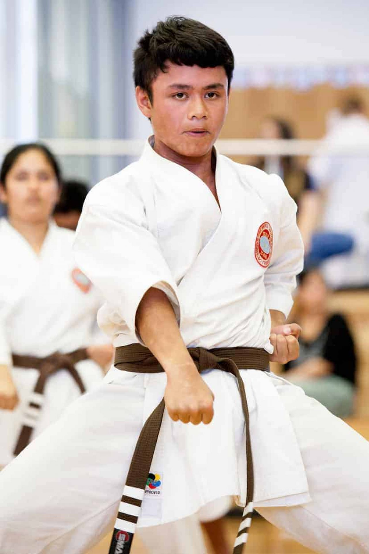 young brown belt executing a gedan punch facing the camera