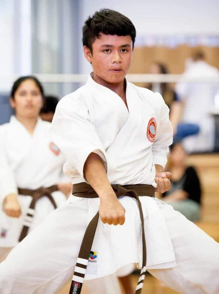 young brown belt executing a gedan punch facing the camera