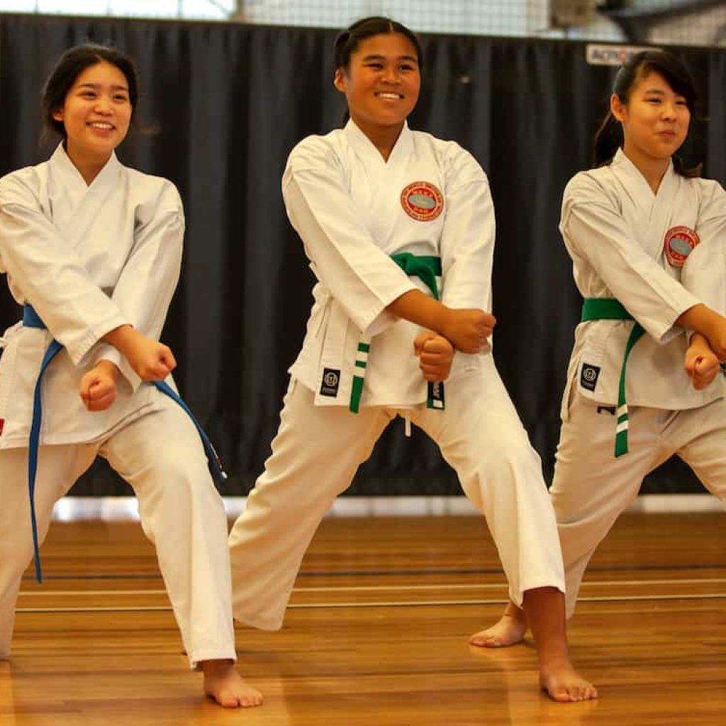 teenage blue and green belt girls executing a front lower block